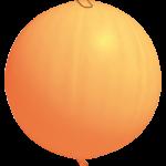 120 (ORANGE PANTONE 1575C)